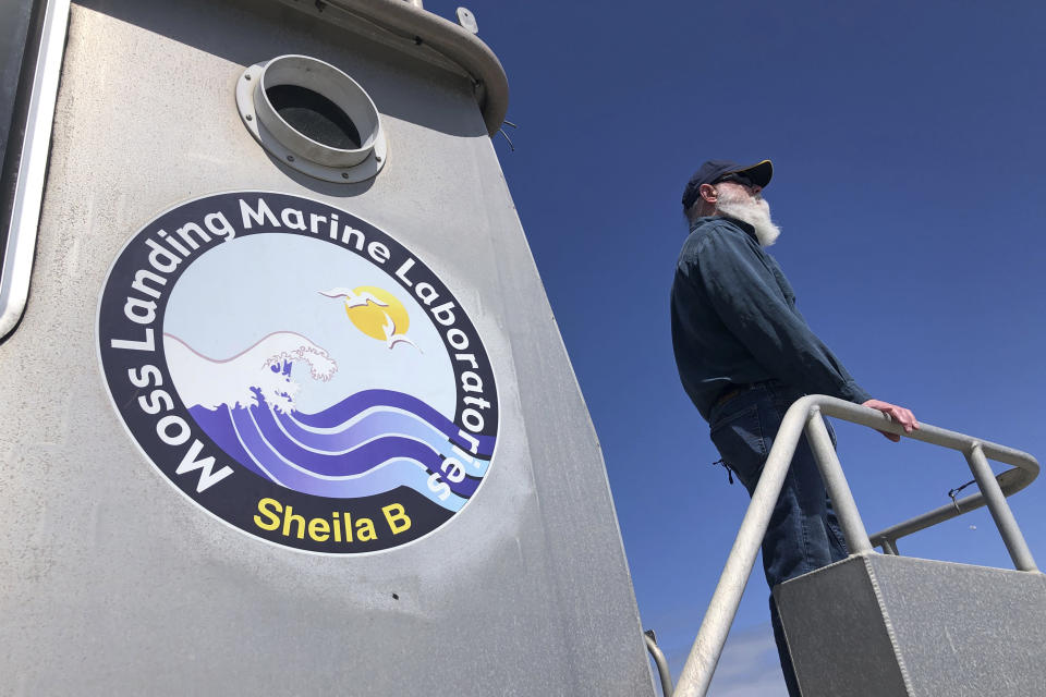 Scott Benson, an ecologist and leatherback turtle expert with the National Oceanic and Atmospheric Administration Fisheries Service, based in Moss Landing looks out over the water from his research boat in Monterey, Calif., on March 25, 2021. Benson has studied western Pacific leatherback turtles for decades and recently co-authored a study that shows an 80% population drop in just 30 years for one extraordinary sub-group that migrates 7,000 miles across the Pacific Ocean to feed on jellyfish in cold waters off California. (AP Photo/Haven Daley)