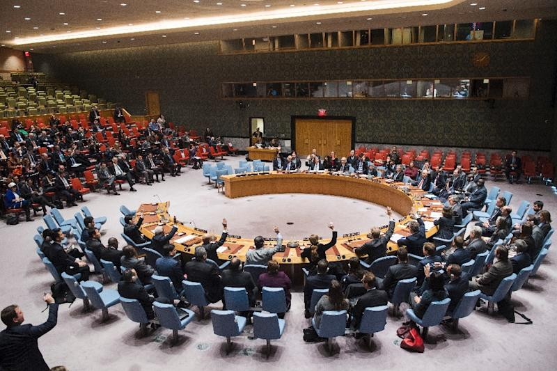 A resolution on establishing the investigative mechanism was adopted by the UN in a vote of 105 to 15, with 52 abstentions (AFP Photo/Amanda VOISARD)
