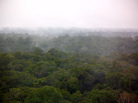 Ecuadorian Tribe Vows to 'Die Fighting' Oil Company