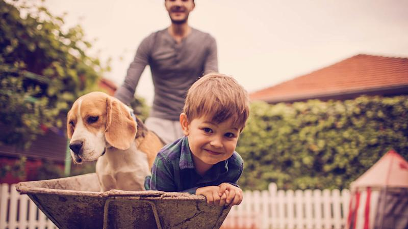 Photo of little smiling boy, his dad and dog having fun outdoors.