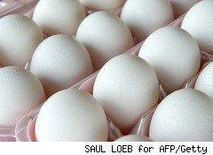 eggs - food safety