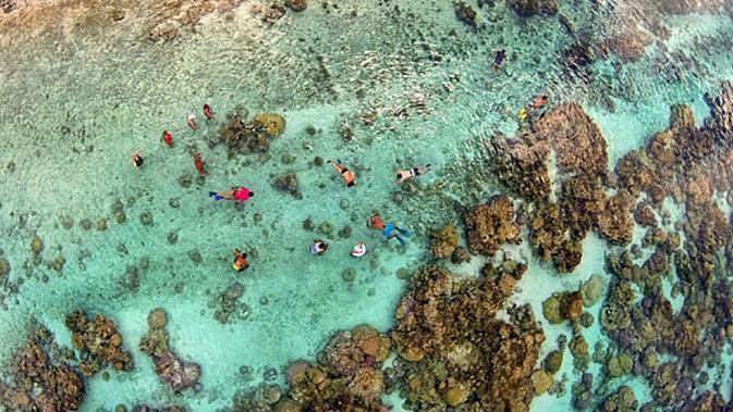 Drone Photography - A Day in the Coral Garden (www.dronestagr.am)