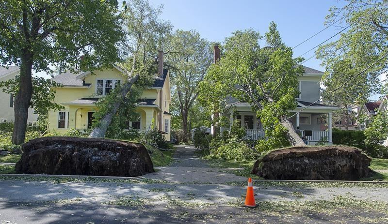 Understanding weather risks for home insurance as premiums, coverage shift
