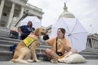 Casey Long and Adrienne, a service dog in training, sit on the steps of Capitol Hill in Washington on Tuesday, Aug. 3, 2021. Treasury Secretary Janet Yellen briefed House Democrats Tuesday on the administration's efforts to prevent widespread housing evictions after a moratorium lapsed, but lawmakers protesting outside the U.S. Capitol said more needs to be done, intensifying pressure on President Joe Biden to act. (AP Photo/Amanda Andrade-Rhoades)