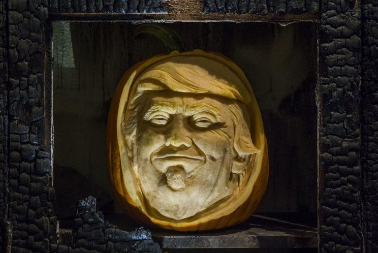 Trumpkin is among the words being considered for inclusion [Guy Bell/REX/Shutterstock]