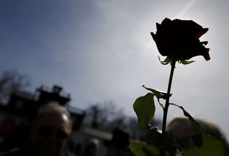 A woman holds a rose as she visits the former Nazi concentration camp Buchenwald near Weimar, April 12, 2015. REUTERS/Kai Pfaffenbach