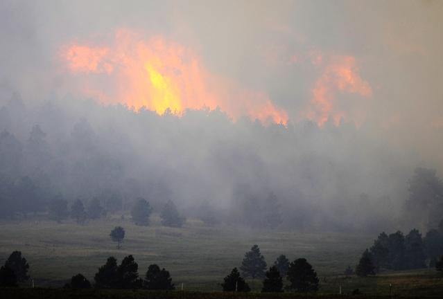 COLORADO SPRINGS, CO - JUNE 12: Fire from the Black Forest Fire burns behind a stand of trees June 12, 2013 near Colorado Springs, Colorado. The fire has reportedly burned 80 to 100 homes and has charred at least 8,000 acres. (Photo by Chris Schneider/Getty Images)