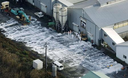 Highly-contagious bird flu found in Japan, culling start