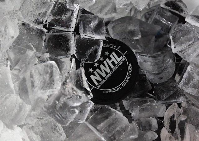 BROOKLYN, NY – OCTOBER 25: An official NWHL puck sits in an ice bucket prior to the game between the New York Riveters and the Connecticut Whale of the National Womens Hockey League on October 25, 2015 in Brooklyn borough of New York City. (Photo by Bruce Bennett/Getty Images)