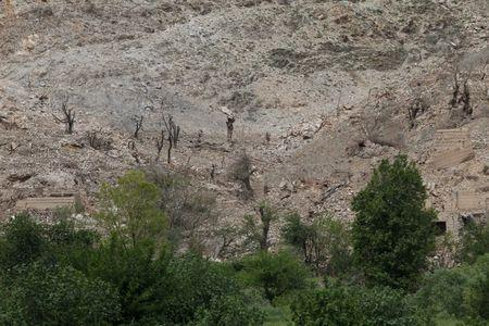 Burn trees are seen the site of a MOAB, or ''mother of all bombs'', which struck the Achin district of the eastern province of Nangarhar, Afghanistan April 23, 2017. REUTERS/Parwiz