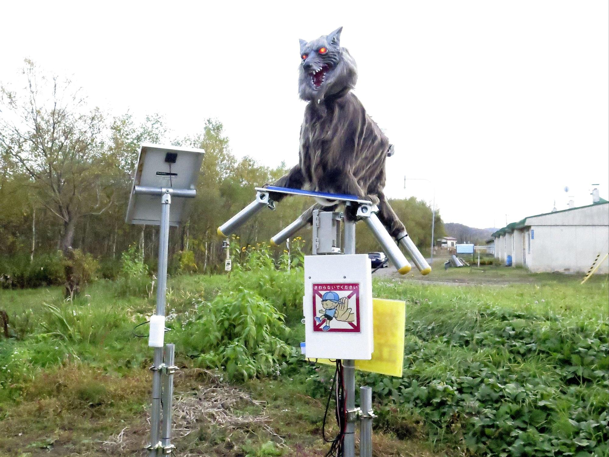 Japanese village deploys robot wolves to scare away bears