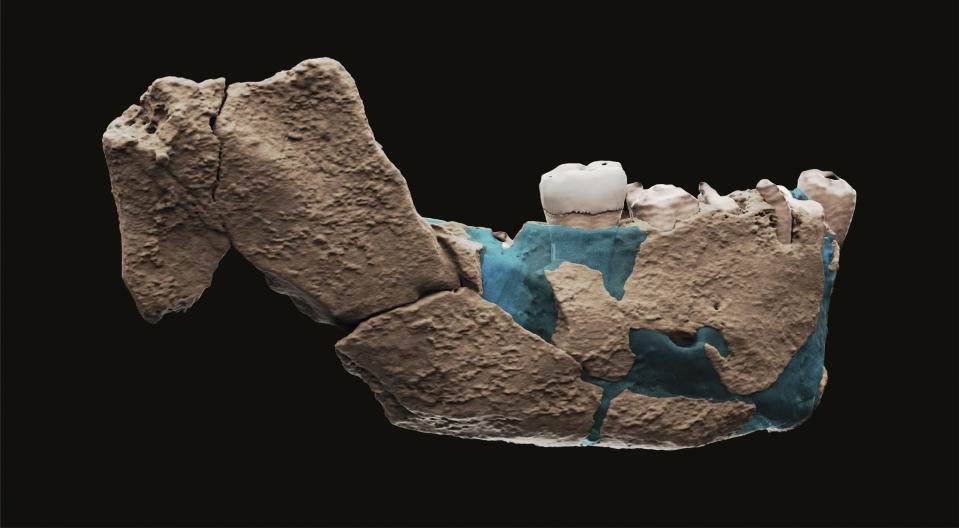 This undated image provided by Tel Aviv University in June 2021 shows a virtual reconstruction of a human ancestor mandible found in Nesher Ramla, Israel. On Thursday, June 24, 2021, scientists reported that bones found in an Israeli quarry are from a branch of the human evolutionary tree and are 120,000 to 140,000 years old. (Ariel Pokhojaev, Sackler Faculty of Medicine, Tel Aviv University via AP)