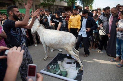 Syrians watch as a donkey walks on a picture of President Bashar al-Assad during an anti-election protest
