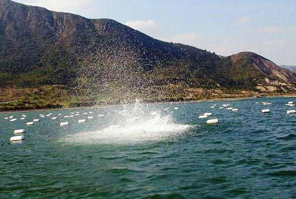 Tourists offered 'sick' fishing trips using dynamite in China