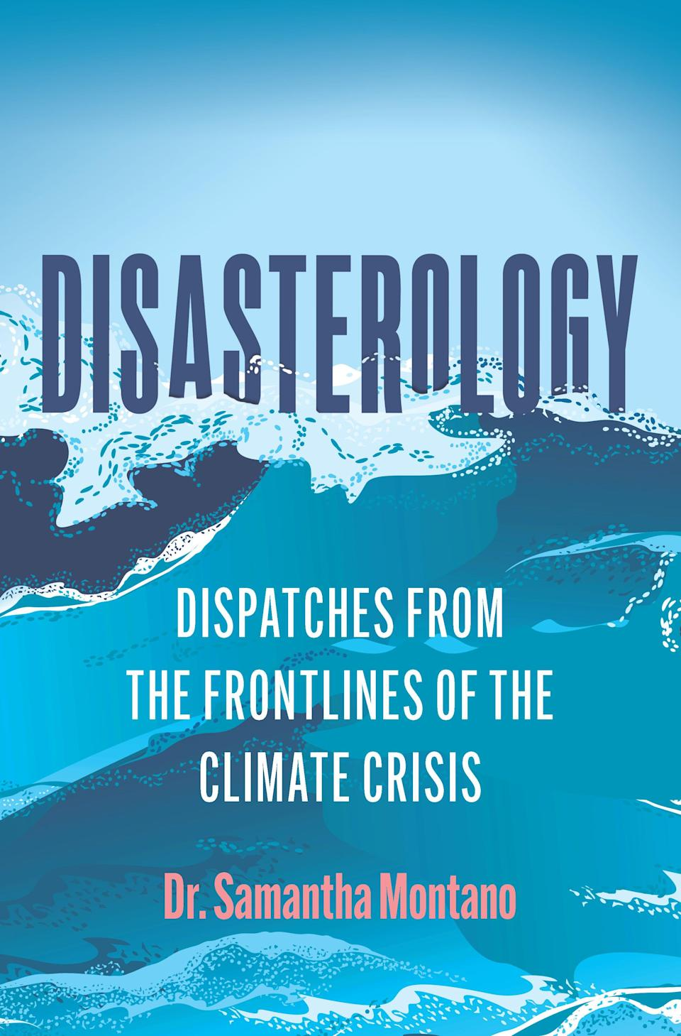 """""""Disasterology:Dispatches from the Frontlines of the Climate Crisis,"""" by Samantha Montano."""