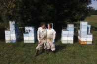 Beekeepers James Cook and Samantha Jones pose for a portrait in front of some of their hives at one of their bee yards near Iola, Wis., on Wednesday, Sept. 23, 2020. The couple has worked with honey bees for several years but started their own business this year — and proceeded with plans even after the coronavirus pandemic hit. (AP Photo/Carrie Antlfinger)