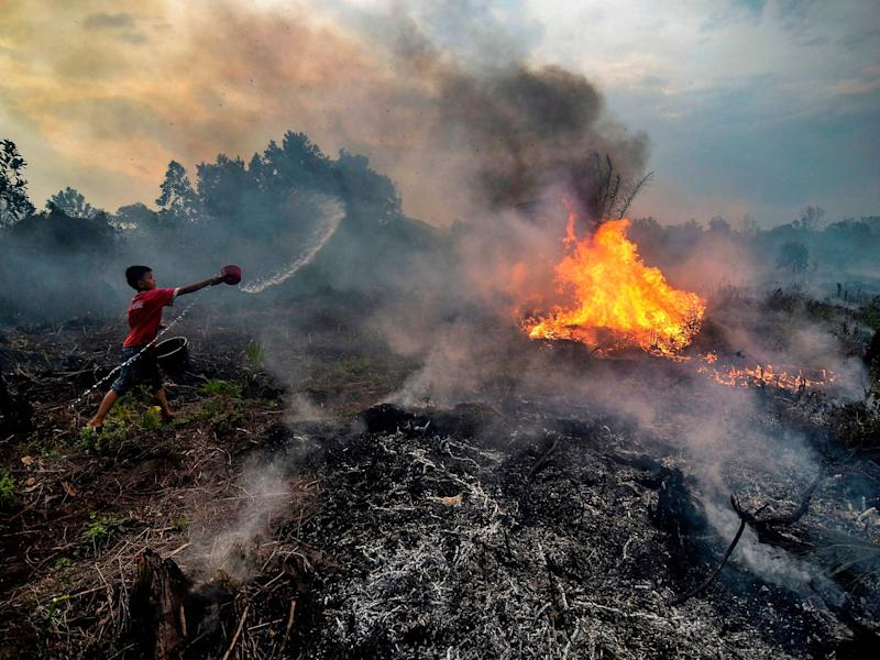 A young boy try to extinguish a fire at a peatland area near their neighbourhood in Pekanbaru, Sumatra: Wahyudi/AFP via Getty Images