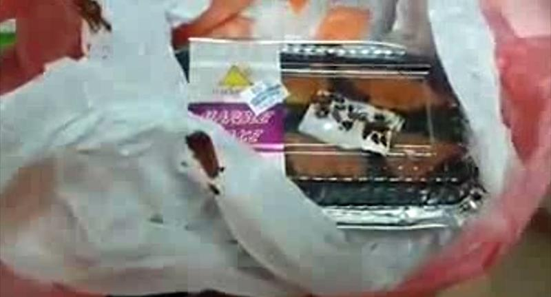 This stomach-churning footage shows the live cockroaches two different customers say they have found in cakes they bought from a supermarket. Source: Newsflash/@sureshgita.suresh