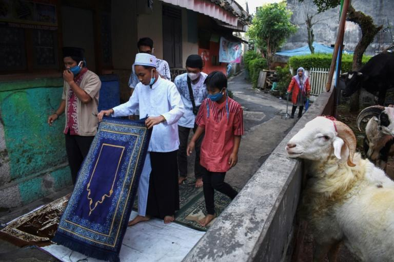 Authorities have banned large crowds, including at traditional events that feature the sacrifice of livestock
