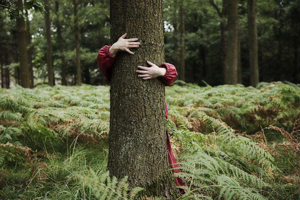Young girl holding arms around tree in Danish forest at a forest kindergarten.