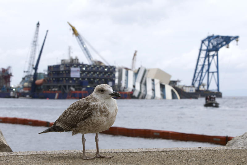 "A bird stands in front of the Costa Concordia ship as it lies on its side on the Tuscan Island of Giglio, Italy, Sunday, Sept. 15, 2013. Authorities have given the final go-ahead for a daring attempt Monday to pull upright the crippled Costa Concordia cruise liner from its side in the waters off Tuscany, a make-or-break engineering feat that has never before been tried in such conditions. The ship capsized there 20 months ago, and Italy's national Civil Protection agency waited until sea and weather conditions were forecast for dawn Monday before giving the OK to try to right it. In a statement Sunday, the Civil Protection agency said the sea and wind conditions ""fall within the range of operating feasibility."" (AP Photo/Andrew Medichini)"