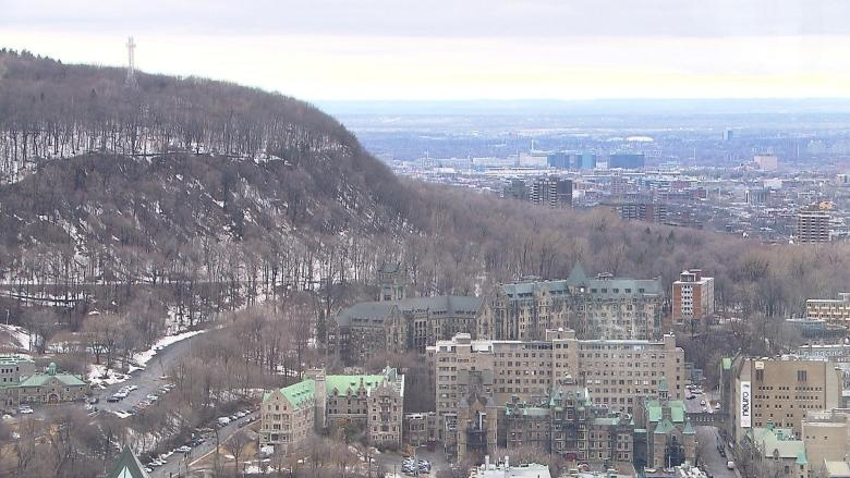 'It is the heart of Montreal': Group pushes for Mount Royal to become UNESCO World Heritage Site