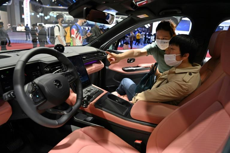 The electric vehicle sector has seen a stampede of tech giants, including major Chinese firms