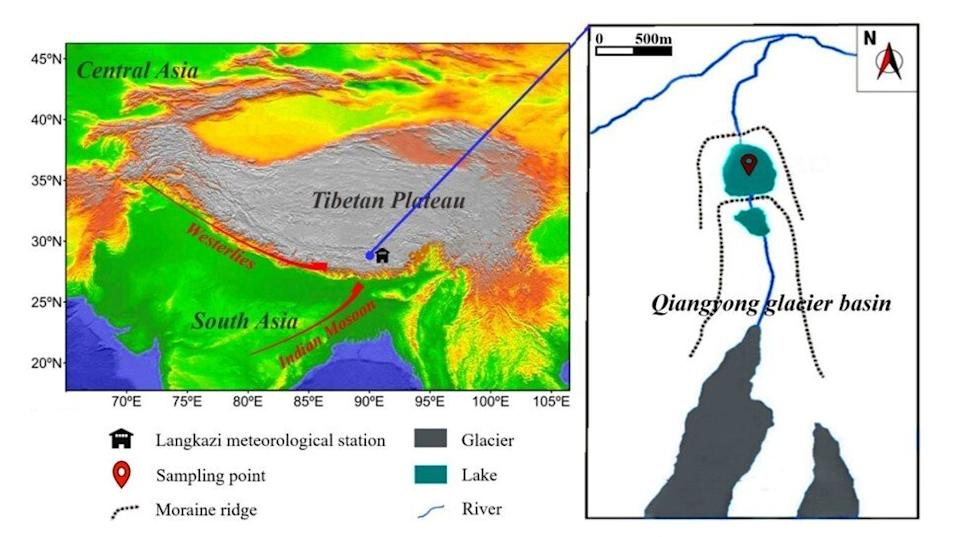 The samples were collected from Qiangyong lake in southern Tibet. Graphic: Wang Xiaoping