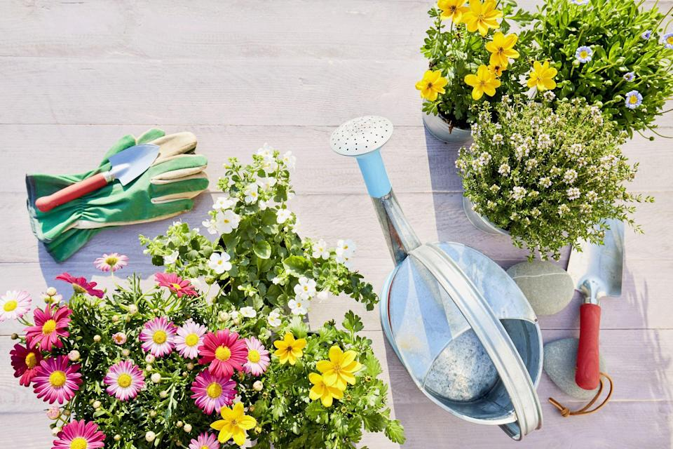 """<p>If you're a garden lover, the first signs of spring are a welcome reason to celebrate. But getting your home and garden ready takes some time. With Earth Day right around the corner, you'll want to pop into your local Home Depot (or browse<a href=""""https://www.homedepot.com/"""" rel=""""nofollow noopener"""" target=""""_blank"""" data-ylk=""""slk:the site"""" class=""""link rapid-noclick-resp""""> the site</a>) to stock up on the essentials you'll need to grow your spring garden.</p><p>And if you're <em>not</em> already a garden enthusiast, you might want to consider it. Besides having some pretty flowers to look at and potentially healthy vegetables to eat, gardening has more benefits than you may know. Various studies have shown that gardening can reduce <a href=""""https://www.housebeautiful.com/lifestyle/gardening/a27509348/fresh-flowers-reduce-pain/"""" rel=""""nofollow noopener"""" target=""""_blank"""" data-ylk=""""slk:stress levels"""" class=""""link rapid-noclick-resp"""">stress levels</a> and boost your mood. <br></p><p>If you're ready to enjoy a full bloom through summer and fall, first you'll want to do some research on when to plant. These flowers are an <a href=""""https://www.housebeautiful.com/lifestyle/gardening/g26871666/best-flowers-to-plant-for-spring/"""" rel=""""nofollow noopener"""" target=""""_blank"""" data-ylk=""""slk:easy way to brighten up your garden"""" class=""""link rapid-noclick-resp"""">easy way to brighten up your garden</a> for spring. but before you start digging, read on for our checklist of must-have items to turn any yard into a blooming oasis in no time. (More of an indoor plant person? Check out our guide to houseplants <a href=""""https://www.housebeautiful.com/houseplants-101/"""" rel=""""nofollow noopener"""" target=""""_blank"""" data-ylk=""""slk:here"""" class=""""link rapid-noclick-resp"""">here</a>). </p>"""