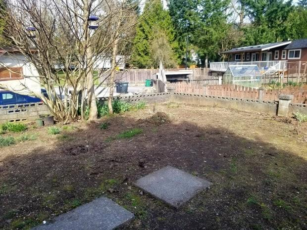 The Charlford House community garden was just a patch of dirt with a few concrete paving stones before it was transformed into an outdoor sanctuary.