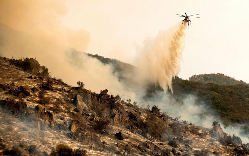 A helicopter drops water on the KNP Complex Fire burning along Generals Highway in Sequoia National Park - Noah Berger/AP