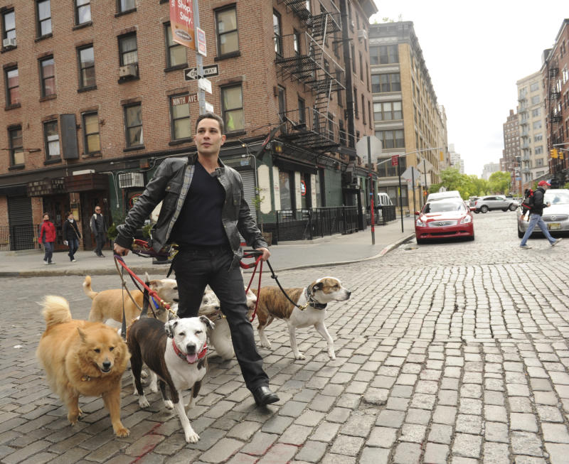 """This undated image released by CBS shows dog guru Justin Silver, host of the new show """"Dogs in the City,"""" walking dogs in New York. Every Wednesday beginning May 30, Silver will try to help New York City hounds and humans tackle unsettling problems like joint custody after divorce or dealing with significant others who just moved in. (AP Photo/CBS, Heather Wines)"""