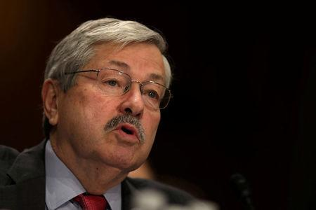 FILE PHOTO - Iowa Governor Terry Branstad before a Senate Foreign Relations Committee confirmation hearing at Capitol Hill in Washington