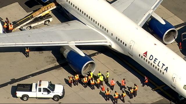 Delta Flight Makes Emergency Landing After Bird Strike
