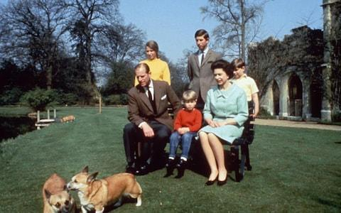 <span>Corgis have played a massive role in Her Majesty's life</span> <span>Credit: Rex Features/Shutterstock </span>