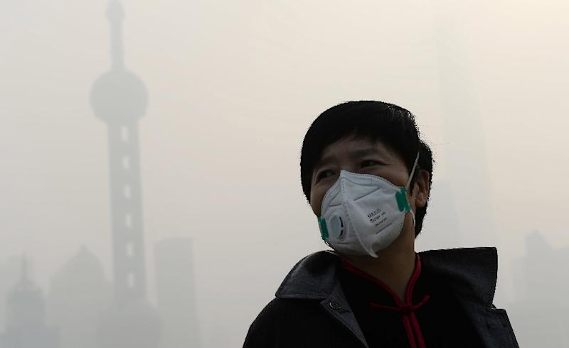 Carbon emissions contribute to smog (AFP Photo/Str)