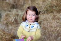 <p>The Palace released an adorable photo of Charlotte, taken by her mother at Amner Hall in Norfolk, to mark her second birthday.</p>