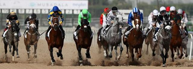 The thoroughbred charge along the Meydan course will be halted this year (AFP Photo/KARIM SAHIB)