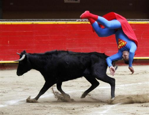 "Pedro Sanchez, a dwarf bullfighter dressed in a ""Superman"" costume, from the Superlandia group flips near a calf at the Plaza de Toros La Macarena in Medellin February 19, 2012."