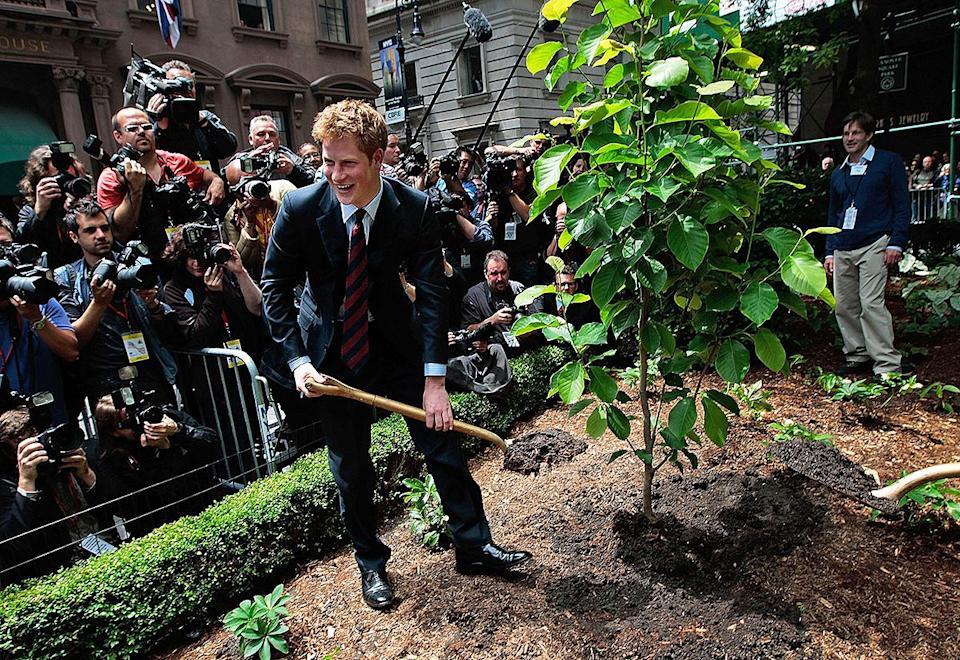 <p>Prince Harry wasn't afraid to get his hands dirty while helping to plant a tree during an official naming of the British Garden at Hanover Square, in New York City's Financial District, in May 2009. </p>