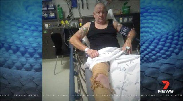 Matt Horn and his son were taken to hospital after the snake bites. Source: 7 News