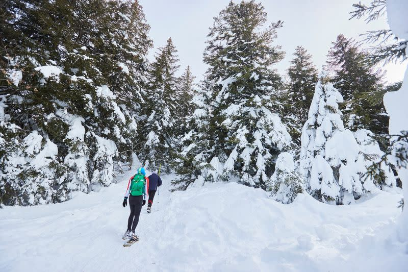 People walk with snowshoes in the forest on a winter day in Semnoz near Annecy