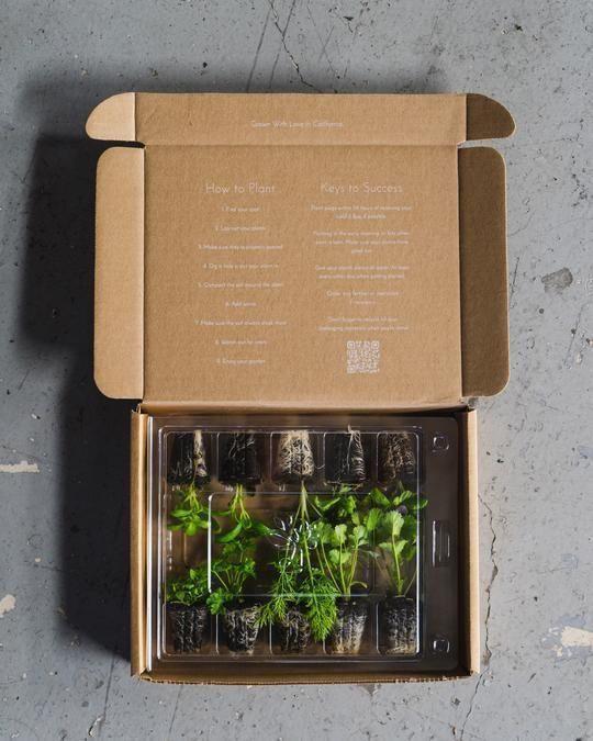 """<p><strong>Leaf'd Box</strong></p><p>leafdbox.com</p><p><a href=""""https://leafdbox.com/products/herb-garden-seasonal-subscription-billed-quarterly"""" rel=""""nofollow noopener"""" target=""""_blank"""" data-ylk=""""slk:SHOP NOW"""" class=""""link rapid-noclick-resp"""">SHOP NOW </a></p><p><em>$44.99 per quarter </em></p><p>Monthly subscriptions are great and all, but they can sometimes be too much to keep up with. Leaf'd Box follows a quarterly schedule, so you only receive a box at the start of every season. Each box comes packed with 10 classic herb varieties, everything from cilantro to basil, which you can later plant in a pot or the ground. Grow your entire meal by signing up for their <a href=""""https://leafdbox.com/products/small-veggie-garden-seasonal-subscription-billed-quarterly"""" rel=""""nofollow noopener"""" target=""""_blank"""" data-ylk=""""slk:vegetable garden subscription box"""" class=""""link rapid-noclick-resp"""">vegetable garden subscription box</a> while you're at it. </p>"""