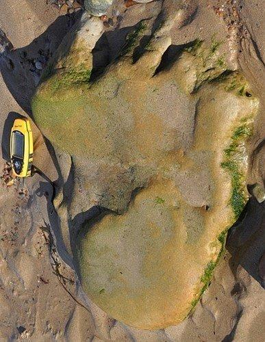 The 170 million-year-old prints were found on the Scottish mainland near Inverness