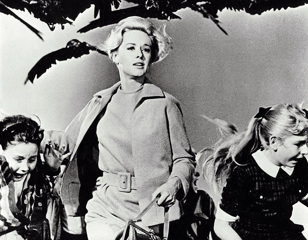 """Jamie's Pick: <a href=""""http://movies.yahoo.com/movie/contributor/1800067419"""">TIPPI HEDREN</a> - <a href=""""http://movies.yahoo.com/movie/1800025230/info"""">The Birds</a>   """"She was naughty, well put together and put up a good fight against those darn birds!"""""""