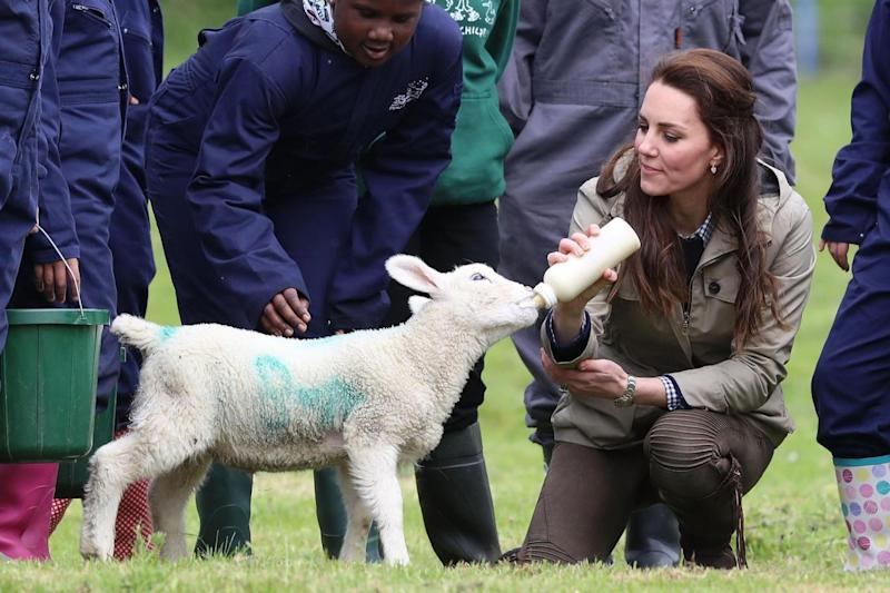 Kate meets Stinky during a visit to the Farms for City Children in Arlingham (Matt Cardy/Getty Images)