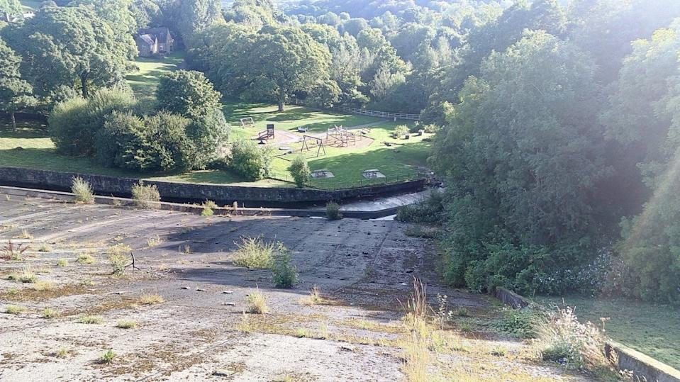 Plants and weeds growing out of Toddbrook Reservoir dam in pictures taken just weeks before the partial collapse. (SWNS)