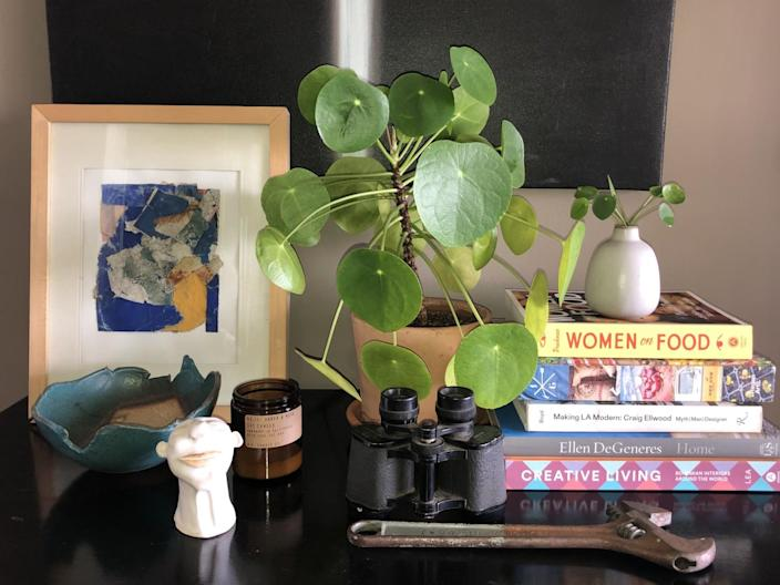 A Chinese money plant on a table with books, a pair of binoculars, a wrench and a framed print.