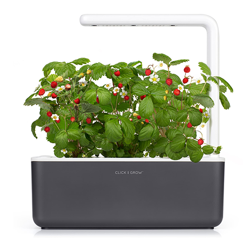 """<p><a class=""""link rapid-noclick-resp"""" href=""""https://www.amazon.co.uk/Click-Grow-Garden-Indoor-Gardening/dp/B06XCBG2Y1/ref=asc_df_B06XCBG2Y1/?tag=hearstuk-yahoo-21&linkCode=df0&hvadid=224088607899&hvpos=1o2&hvnetw=g&hvrand=16502950739671166337&hvdev=c&hvlocphy=1006886&hvtargid=pla-347884096216&psc=1&ascsubtag=%5Bartid%7C1923.g.22798845%5Bsrc%7Cyahoo-uk"""" rel=""""nofollow noopener"""" target=""""_blank"""" data-ylk=""""slk:SHOP"""">SHOP</a></p><p>You just can't keep those pesky basil plants alive, can you? Try as you might, you inevitably wake up to a wilting graveyard of tasteless leaves. Well, stop relying on shop-bought pots and invest in this trusty herb-gardening kit, featuring LED grow lights and self-watering mechanics.</p><p>Amazon, £89.70</p>"""