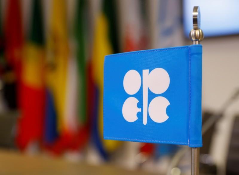 FILE PHOTO: The logo of the Organization of the Petroleum Exporting Countries (OPEC) inside its Vienna headquarters
